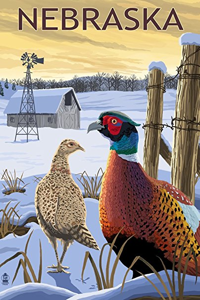 Nebraska - Pheasants (36x54 Giclee Gallery Print, Wall Decor Travel Poster)